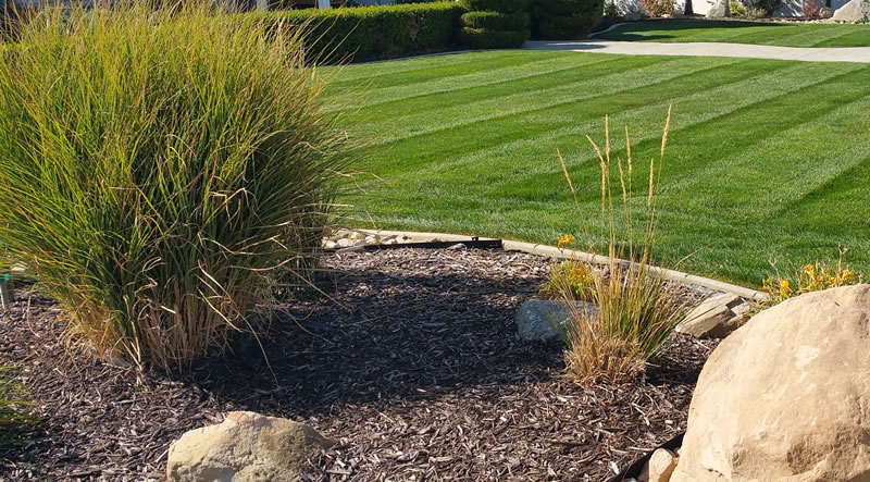Bark Mulch Installation For Landscape Beds